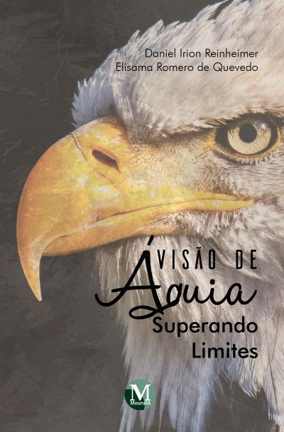 Capa do livro: VISÃO DE ÁGUIA:<br> superando limites