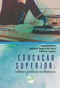 EDUCAÇÃO SUPERIOR:<br> saberes e práticas na docência