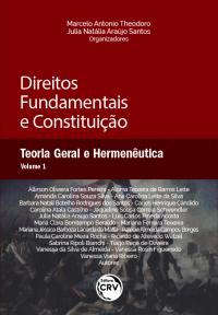 DIREITOS FUNDAMENTAIS E CONSTITUIÇÃO: <br> Teoria Geral e Hermenêutica <br> Volume 1