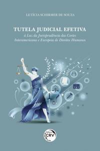 TUTELA JUDICIAL EFETIVA: <br>À luz da jurisprudência das cortes interamericana e europeia de direitos humanos