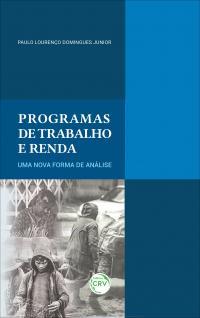 PROGRAMAS DE TRABALHO E RENDA: <br>uma nova forma de análise